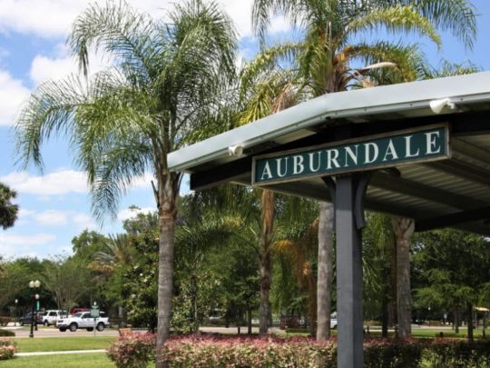 Auburndale-Florida Tree Service Pros-We Offer Tree Trimming Services, Tree Removal, Tree Pruning, Tree Cutting, Residential and Commercial Tree Trimming Services, Storm Damage, Emergency Tree Removal, Land Clearing, Tree Companies, Tree Care Service, Stump Grinding, and we're the Best Tree Trimming Company Near You Guaranteed!