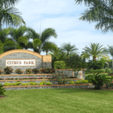 Citrus Park-Florida Tree Service Pros-We Offer Tree Trimming Services, Tree Removal, Tree Pruning, Tree Cutting, Residential and Commercial Tree Trimming Services, Storm Damage, Emergency Tree Removal, Land Clearing, Tree Companies, Tree Care Service, Stump Grinding, and we're the Best Tree Trimming Company Near You Guaranteed!