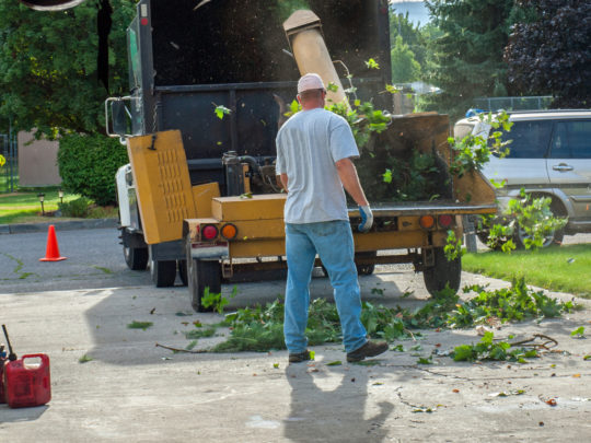 Florida tree service-Florida Tree Service Pros-We Offer Tree Trimming Services, Tree Removal, Tree Pruning, Tree Cutting, Residential and Commercial Tree Trimming Services, Storm Damage, Emergency Tree Removal, Land Clearing, Tree Companies, Tree Care Service, Stump Grinding, and we're the Best Tree Trimming Company Near You Guaranteed!