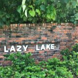 Lazy Lake-Florida Tree Service Pros-We Offer Tree Trimming Services, Tree Removal, Tree Pruning, Tree Cutting, Residential and Commercial Tree Trimming Services, Storm Damage, Emergency Tree Removal, Land Clearing, Tree Companies, Tree Care Service, Stump Grinding, and we're the Best Tree Trimming Company Near You Guaranteed!