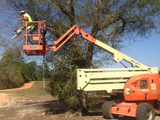 Lift For Tree Trimming-Florida Tree Service Pros-We Offer Tree Trimming Services, Tree Removal, Tree Pruning, Tree Cutting, Residential and Commercial Tree Trimming Services, Storm Damage, Emergency Tree Removal, Land Clearing, Tree Companies, Tree Care Service, Stump Grinding, and we're the Best Tree Trimming Company Near You Guaranteed!