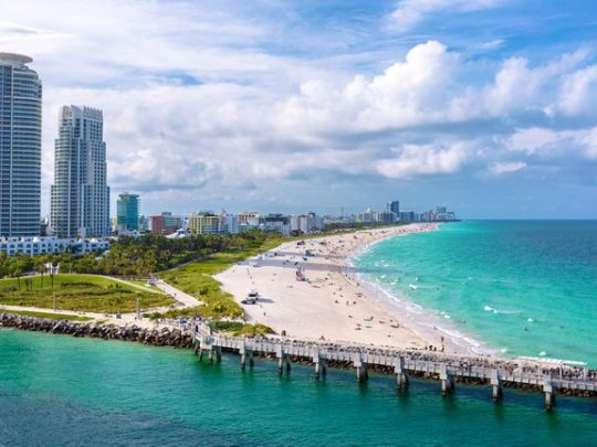 Miami-Florida Tree Service Pros-We Offer Tree Trimming Services, Tree Removal, Tree Pruning, Tree Cutting, Residential and Commercial Tree Trimming Services, Storm Damage, Emergency Tree Removal, Land Clearing, Tree Companies, Tree Care Service, Stump Grinding, and we're the Best Tree Trimming Company Near You Guaranteed!