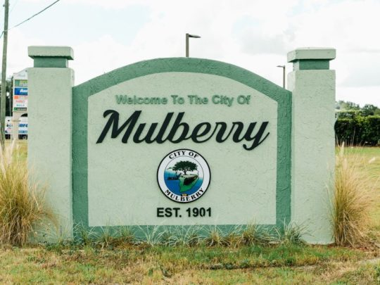 Mulberry-Florida Tree Service Pros-We Offer Tree Trimming Services, Tree Removal, Tree Pruning, Tree Cutting, Residential and Commercial Tree Trimming Services, Storm Damage, Emergency Tree Removal, Land Clearing, Tree Companies, Tree Care Service, Stump Grinding, and we're the Best Tree Trimming Company Near You Guaranteed!