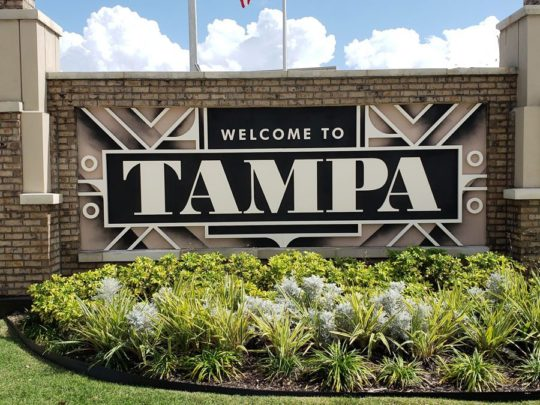 New Tampa-Florida Tree Service Pros-We Offer Tree Trimming Services, Tree Removal, Tree Pruning, Tree Cutting, Residential and Commercial Tree Trimming Services, Storm Damage, Emergency Tree Removal, Land Clearing, Tree Companies, Tree Care Service, Stump Grinding, and we're the Best Tree Trimming Company Near You Guaranteed!