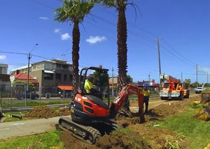 Palm Tree Removal-Florida Tree Service Pros-We Offer Tree Trimming Services, Tree Removal, Tree Pruning, Tree Cutting, Residential and Commercial Tree Trimming Services, Storm Damage, Emergency Tree Removal, Land Clearing, Tree Companies, Tree Care Service, Stump Grinding, and we're the Best Tree Trimming Company Near You Guaranteed!