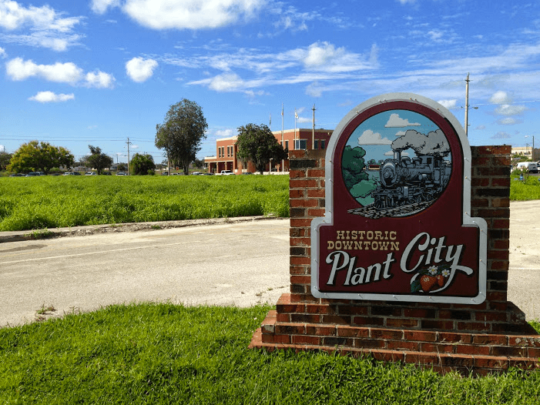 Plant City-Florida Tree Service Pros-We Offer Tree Trimming Services, Tree Removal, Tree Pruning, Tree Cutting, Residential and Commercial Tree Trimming Services, Storm Damage, Emergency Tree Removal, Land Clearing, Tree Companies, Tree Care Service, Stump Grinding, and we're the Best Tree Trimming Company Near You Guaranteed!