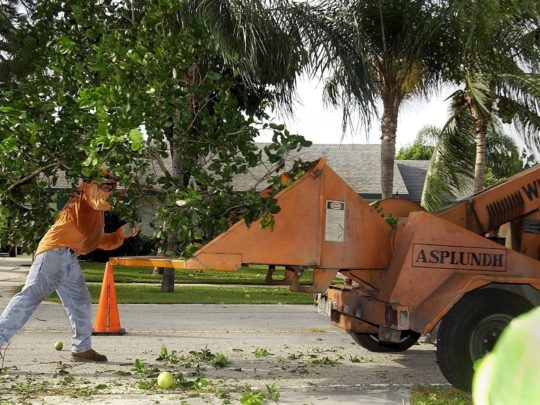 Residential Tree Services Near Me Florida-Florida Tree Service Pros-We Offer Tree Trimming Services, Tree Removal, Tree Pruning, Tree Cutting, Residential and Commercial Tree Trimming Services, Storm Damage, Emergency Tree Removal, Land Clearing, Tree Companies, Tree Care Service, Stump Grinding, and we're the Best Tree Trimming Company Near You Guaranteed!