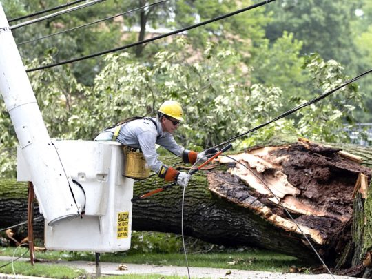 Storm-Damage-Near-Me-Florida Tree Service Pros-We Offer Tree Trimming Services, Tree Removal, Tree Pruning, Tree Cutting, Residential and Commercial Tree Trimming Services, Storm Damage, Emergency Tree Removal, Land Clearing, Tree Companies, Tree Care Service, Stump Grinding, and we're the Best Tree Trimming Company Near You Guaranteed!