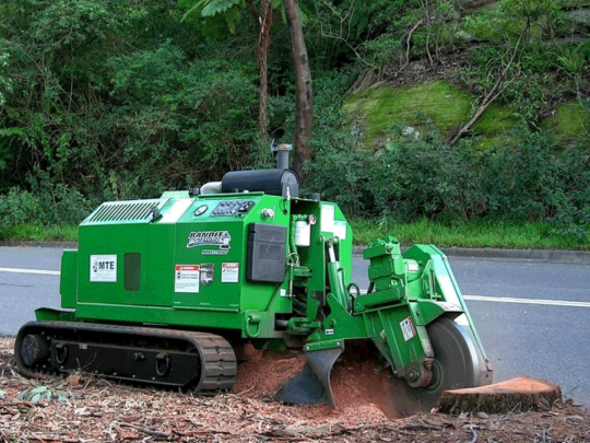 Stump removal contractors-Florida Tree Service Pros-We Offer Tree Trimming Services, Tree Removal, Tree Pruning, Tree Cutting, Residential and Commercial Tree Trimming Services, Storm Damage, Emergency Tree Removal, Land Clearing, Tree Companies, Tree Care Service, Stump Grinding, and we're the Best Tree Trimming Company Near You Guaranteed!