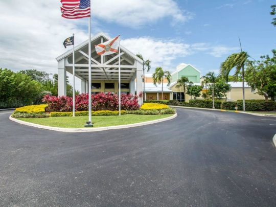 The Hammocks-Florida Tree Service Pros-We Offer Tree Trimming Services, Tree Removal, Tree Pruning, Tree Cutting, Residential and Commercial Tree Trimming Services, Storm Damage, Emergency Tree Removal, Land Clearing, Tree Companies, Tree Care Service, Stump Grinding, and we're the Best Tree Trimming Company Near You Guaranteed!
