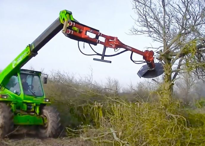 Tree Trimming-Florida Tree Service Pros-We Offer Tree Trimming Services, Tree Removal, Tree Pruning, Tree Cutting, Residential and Commercial Tree Trimming Services, Storm Damage, Emergency Tree Removal, Land Clearing, Tree Companies, Tree Care Service, Stump Grinding, and we're the Best Tree Trimming Company Near You Guaranteed!