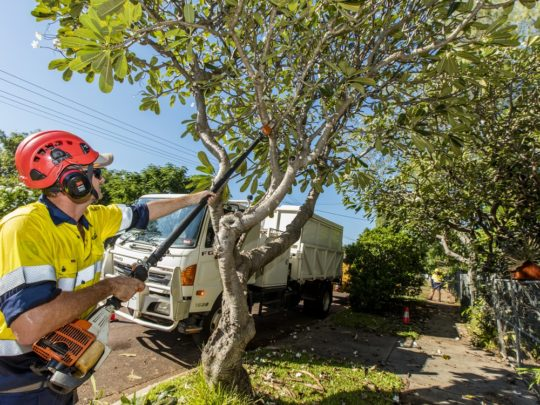 Tree Trimming Prices-Florida Tree Service Pros-We Offer Tree Trimming Services, Tree Removal, Tree Pruning, Tree Cutting, Residential and Commercial Tree Trimming Services, Storm Damage, Emergency Tree Removal, Land Clearing, Tree Companies, Tree Care Service, Stump Grinding, and we're the Best Tree Trimming Company Near You Guaranteed!