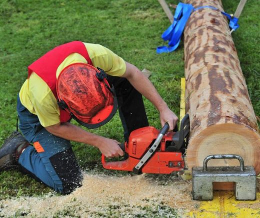 Tree Trimming Rates-Florida Tree Service Pros-We Offer Tree Trimming Services, Tree Removal, Tree Pruning, Tree Cutting, Residential and Commercial Tree Trimming Services, Storm Damage, Emergency Tree Removal, Land Clearing, Tree Companies, Tree Care Service, Stump Grinding, and we're the Best Tree Trimming Company Near You Guaranteed!
