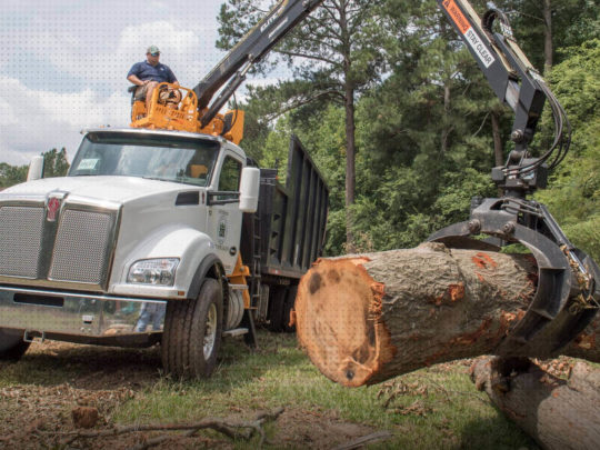 Tree care services near me-Florida Tree Service Pros-We Offer Tree Trimming Services, Tree Removal, Tree Pruning, Tree Cutting, Residential and Commercial Tree Trimming Services, Storm Damage, Emergency Tree Removal, Land Clearing, Tree Companies, Tree Care Service, Stump Grinding, and we're the Best Tree Trimming Company Near You Guaranteed!