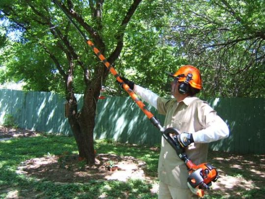 Tree pruning near me Florida-Florida Tree Service Pros-We Offer Tree Trimming Services, Tree Removal, Tree Pruning, Tree Cutting, Residential and Commercial Tree Trimming Services, Storm Damage, Emergency Tree Removal, Land Clearing, Tree Companies, Tree Care Service, Stump Grinding, and we're the Best Tree Trimming Company Near You Guaranteed!