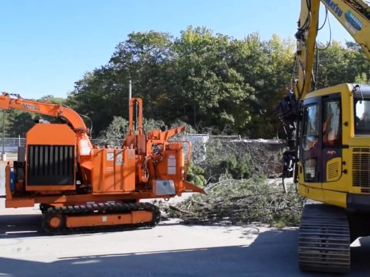 Tree removing service-Florida Tree Service Pros-We Offer Tree Trimming Services, Tree Removal, Tree Pruning, Tree Cutting, Residential and Commercial Tree Trimming Services, Storm Damage, Emergency Tree Removal, Land Clearing, Tree Companies, Tree Care Service, Stump Grinding, and we're the Best Tree Trimming Company Near You Guaranteed!