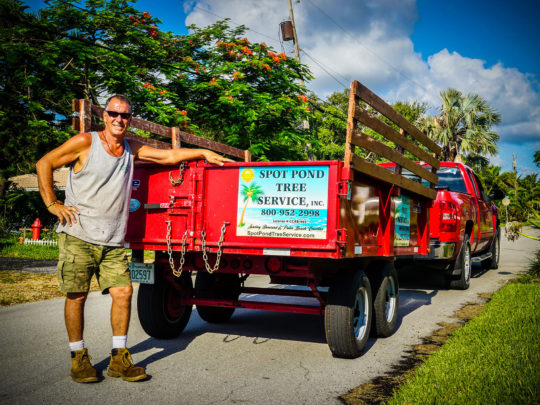 Tree service flyer-Florida Tree Service Pros-We Offer Tree Trimming Services, Tree Removal, Tree Pruning, Tree Cutting, Residential and Commercial Tree Trimming Services, Storm Damage, Emergency Tree Removal, Land Clearing, Tree Companies, Tree Care Service, Stump Grinding, and we're the Best Tree Trimming Company Near You Guaranteed!