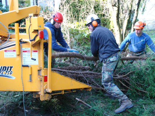 Tree trimming services in my area-Florida Tree Service Pros-We Offer Tree Trimming Services, Tree Removal, Tree Pruning, Tree Cutting, Residential and Commercial Tree Trimming Services, Storm Damage, Emergency Tree Removal, Land Clearing, Tree Companies, Tree Care Service, Stump Grinding, and we're the Best Tree Trimming Company Near You Guaranteed!