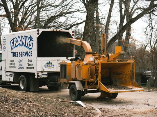 Tree trimming services near me-Florida Tree Service Pros-We Offer Tree Trimming Services, Tree Removal, Tree Pruning, Tree Cutting, Residential and Commercial Tree Trimming Services, Storm Damage, Emergency Tree Removal, Land Clearing, Tree Companies, Tree Care Service, Stump Grinding, and we're the Best Tree Trimming Company Near You Guaranteed!